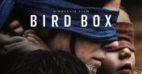 netflix tu choi cat bo doan phim gay tranh cai cua bird box