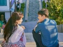 xem when the camellia blooms de hieu vi sao nguoi han say me gong hyo jin nhu the