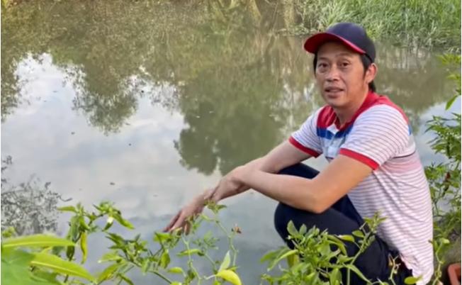 'Mục sở thị' cây cherry 8 tỷ của danh hài Hoài Linh