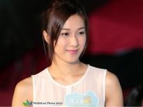 tvb xac nhan lam phim bang chung thep 4 va su do hanh gia 3