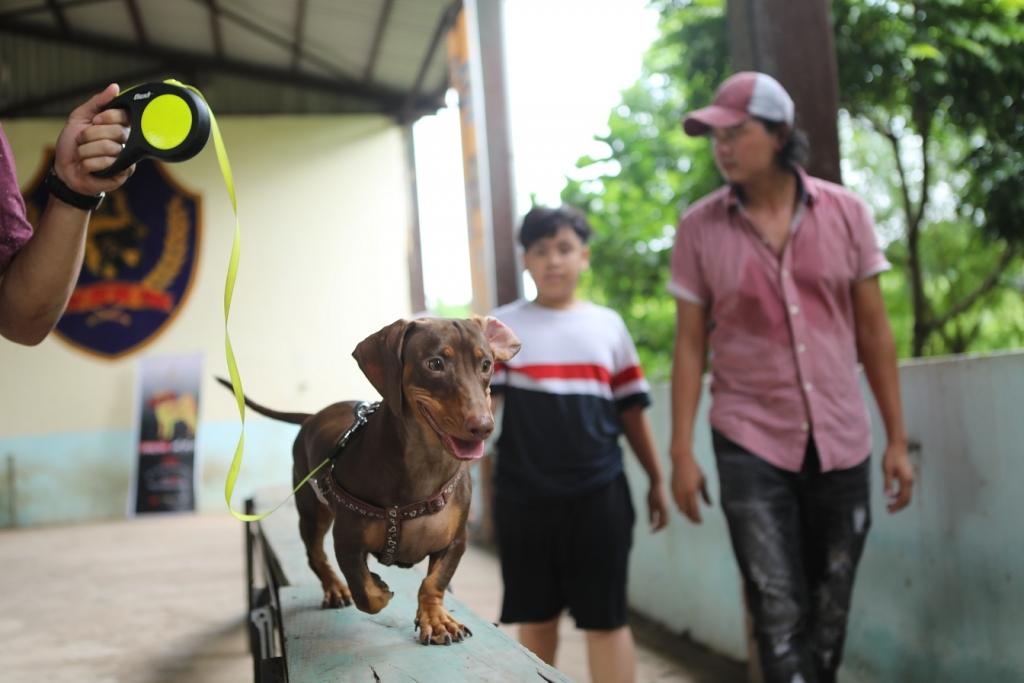 dien vien bon chan trong phim cau vang khong phai thuan viet