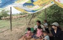 hang phim tai lieu khoa hoc trung uong tong ket hoat dong nghe thuat 2017 2018