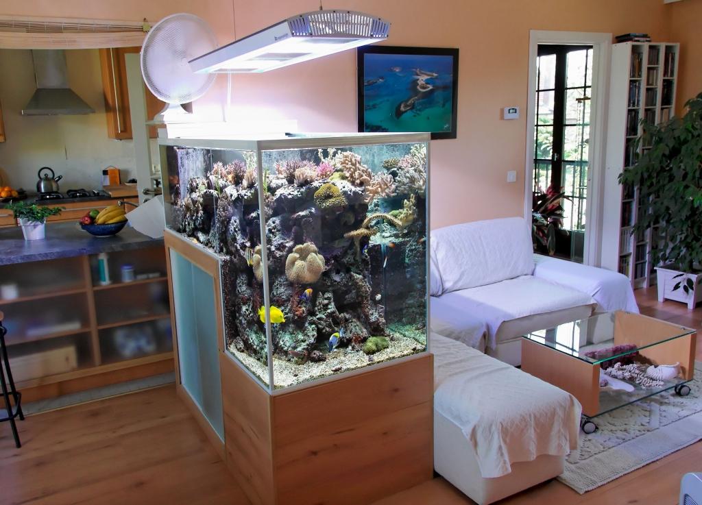 Góc phong thủy: Những vị trí cấm kỵ khi bài trí bể cá trong nhà
