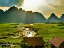 chay san khau kong dao dau lau tranh cai pr kieu viet