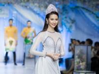 phan thi mo khong co con duong nao trai san hoa hong