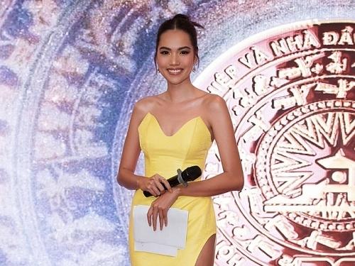 top 10 hoa hau hoan vu viet nam le hoang phuong bat ngo lan san lam mc