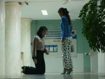 'Cây táo nở hoa' tập 58: Châu tuyệt vọng quỳ gối cầu xin nhưng Báu vẫn nhẫn tâm từ chối hiến gan cho anh hai