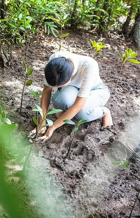 miss earth vietnam 2020 thai thi hoa loi bun trong cay o rung ngap man can gio