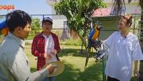 Hoa hậu Tiểu Vy và Liz Kim Cương chật vật 'lên rừng, xuống biển'cùng Trường Giang