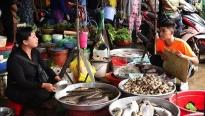 'Ẩm thực kỳ thú': Quách Ngọc Tuyên tự tinvề đúng 'địa bàn'khi gặp thử thách tại chợ cá
