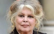 Brigitte Bardot xen vào tranh chấp tài sản của gia đình cố ca sĩ Johnny Hallyday