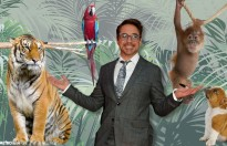 doctor dolittle do robert downey jr dong se ra rap vao nam 2019