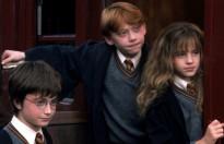 Học sinh trường Hogwarts trong 'Harry Potter' ngày đó, bây giờ