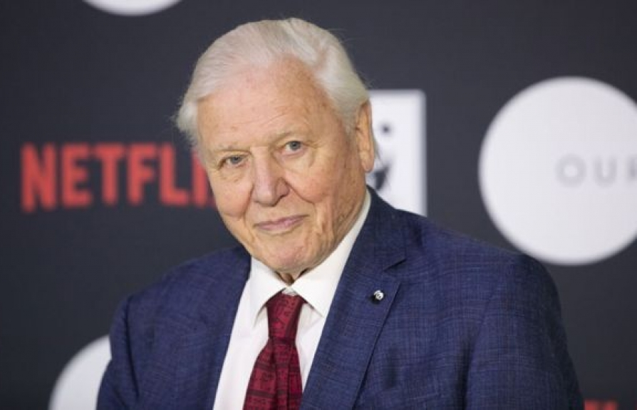 sir david attenborough dan truyen cho bo phim tai lieu our planet tren netflix