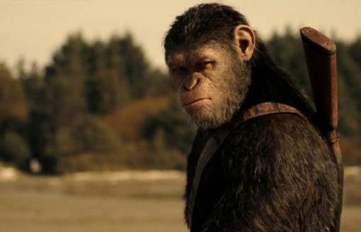 hoi hop cho cuoc chien giua nguoi va khi trong war for the planet of the apes
